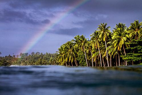 Scenec_Ebay_Mentawais_rainbow-2271_ps