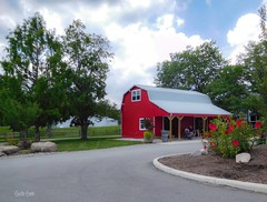 Red barn - red flowers (Lake Farmpark)