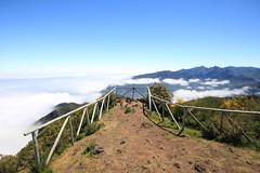 Madeira 2014 - 18.Tag, Pico Ruivo do Paul, Pica da Cana, Pinaculo, Achada do Cruz