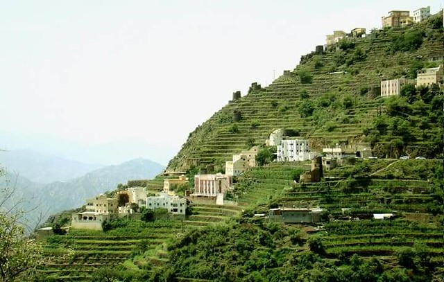 2504 Tihama and Faifa, the beautiful places to visit in Asir Region 01