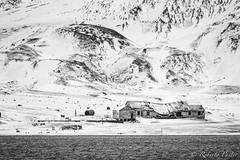 Isla Decepción - Antártida