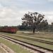 Rural Railway Station - 1