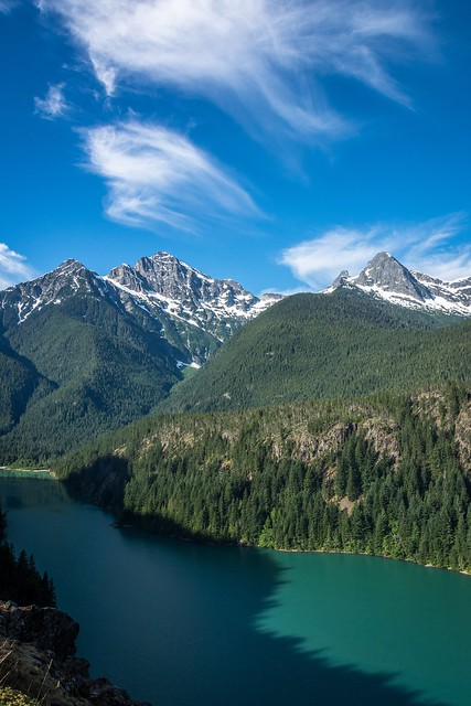 Spring has finally reached the state of Washington! Scenes like this aren't far away!