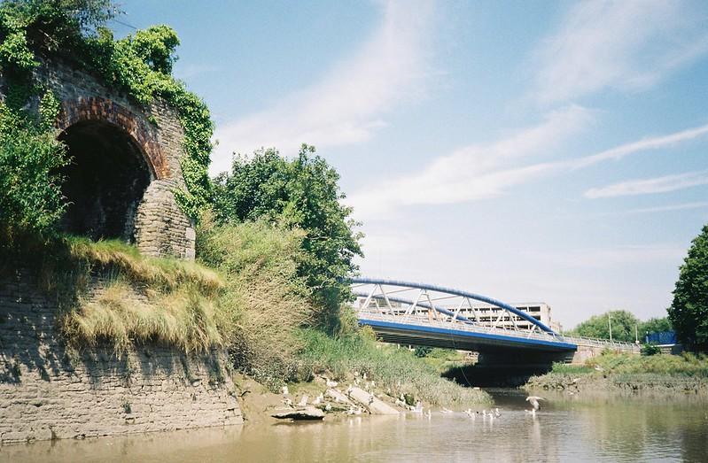 The guano bridge