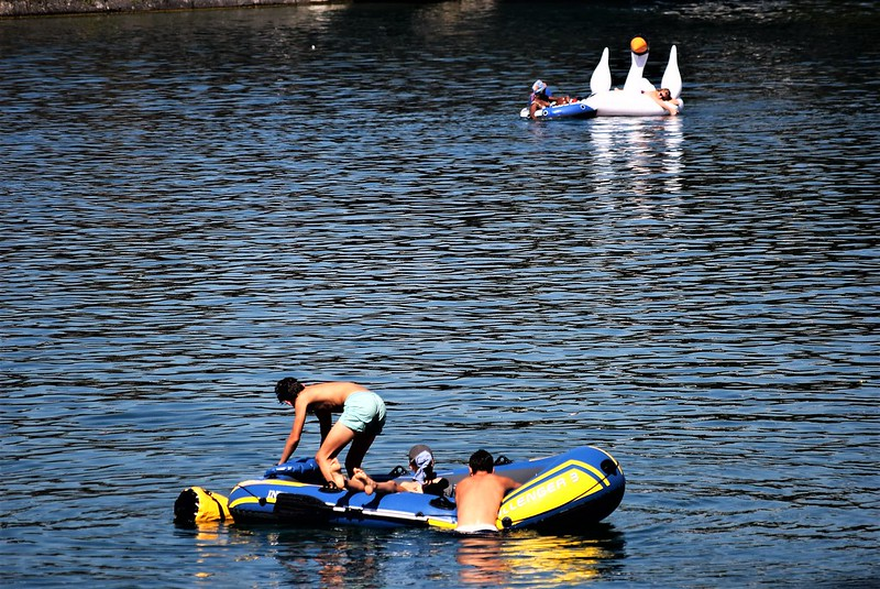 River Aare Swimmers 30.07 (7)