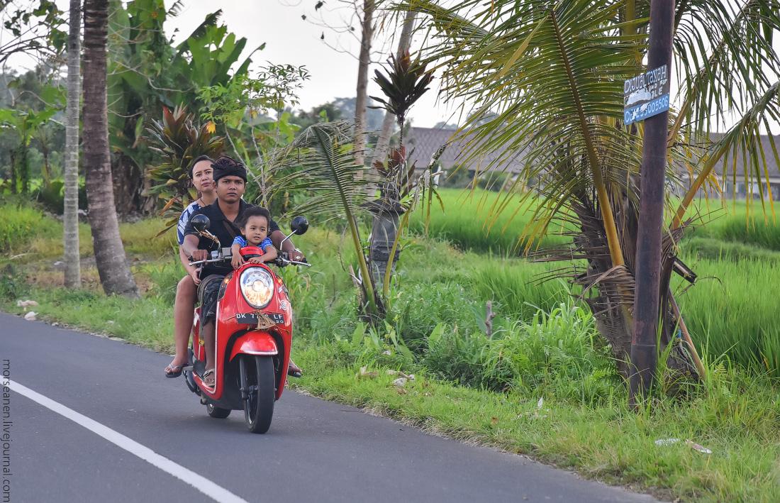 Bali-Ubud-(33)