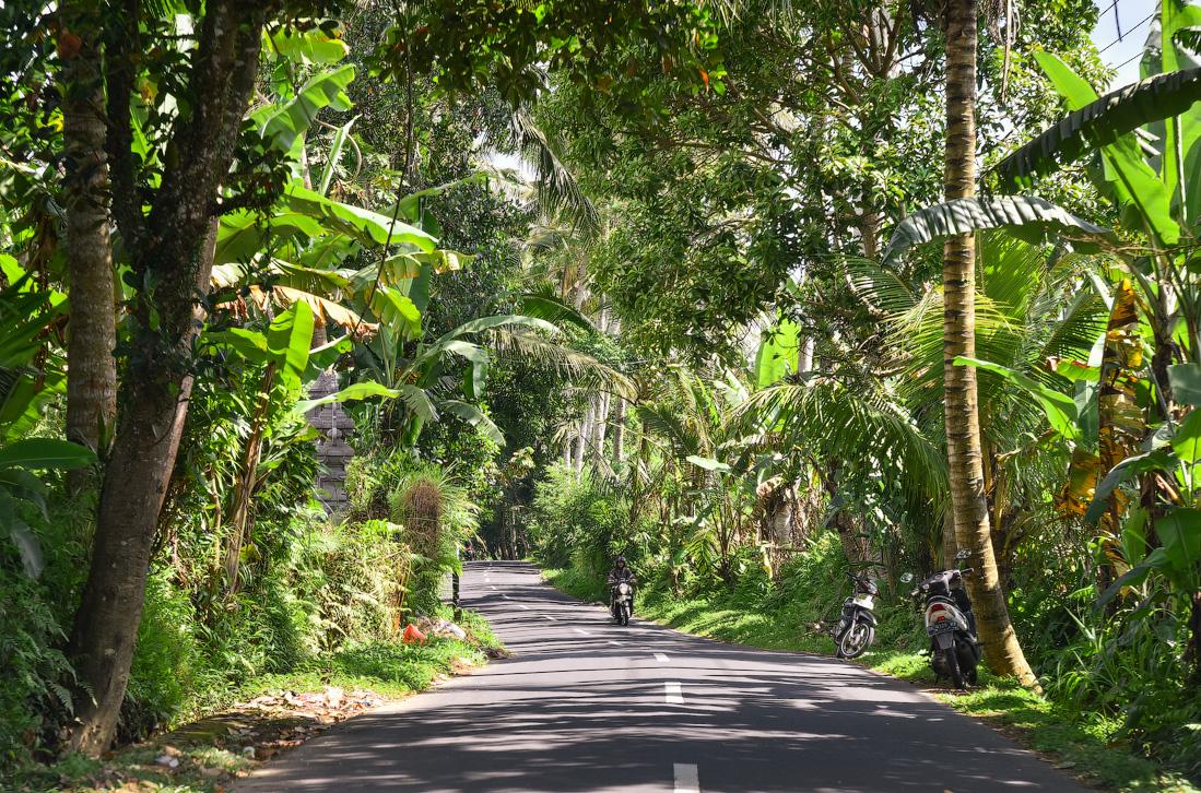 Bali-Ubud-(25)