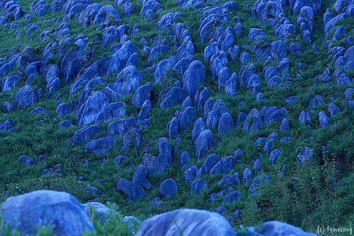 Hiraodai at Blue Moment