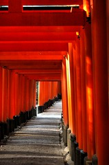 red, shinto shrine, torii,