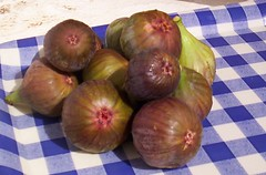 vegetable, shallot, common fig, produce, food,