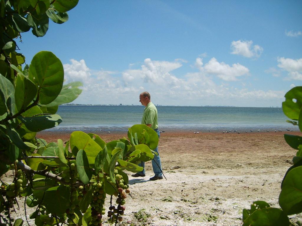 Sanibel Island Southwest Florida Tripcarta