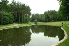 floodplain, garden, reservoir, fish pond, lake, golf course, reflection, lawn, pond, waterway,