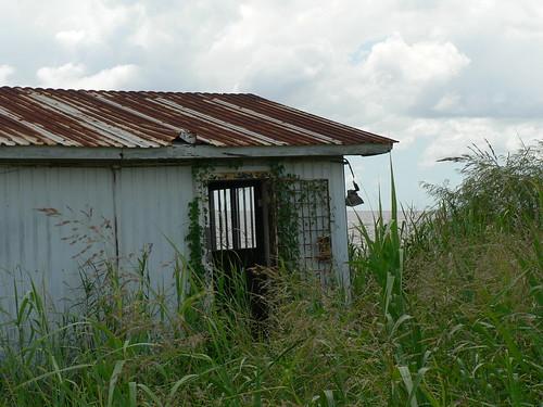 grass rusty shack