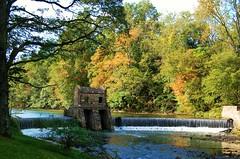 Speedwell park - dam 1