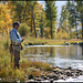 Big Hole River, MT - Fly Fishing Guide