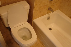 toilet and tub
