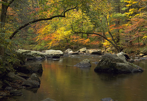 Ken Lockwood Gorge, autumn by gmaronson