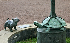 Dog And Turtle (closer)