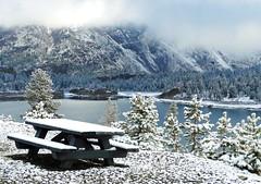 Winter's Tablecloth, Tioga Lake, Yosemite 2015