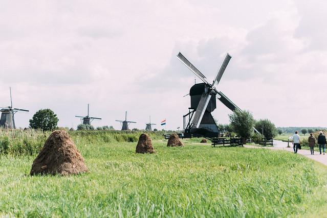 2017荷蘭自助旅行-1126