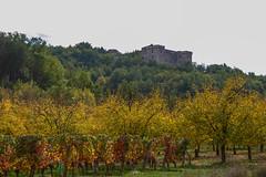 Château de la Coste (Lot) - Photo of Sérignac