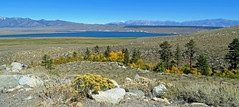 Crowley Lake Panorama  from McKee Trail Creek Road, CA 2017