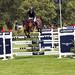 Hickstead Show Jumping