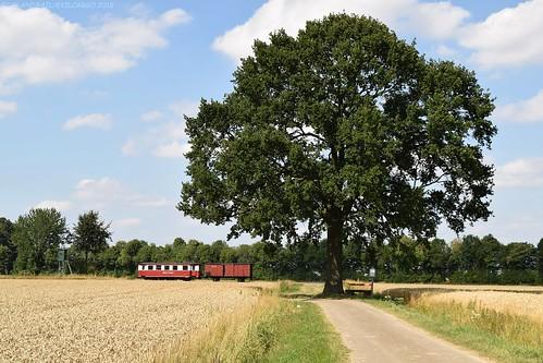Wittlager Kreisbahn T3 @ Rabber