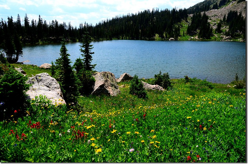 Upper Forest Lake (6)