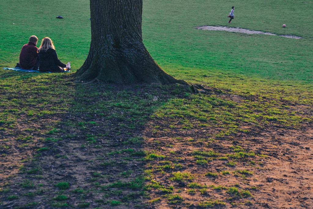 Parque du foret