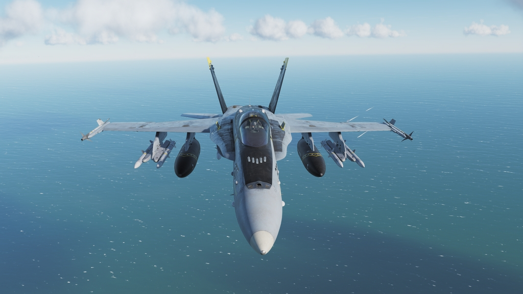 DCS World: F/A-18C Hornet  30002093128_f730d63818_o