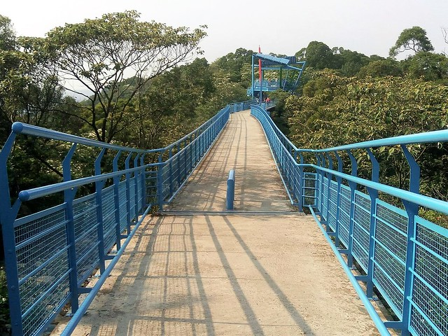 銅鑼九華山天空步道。 (3)