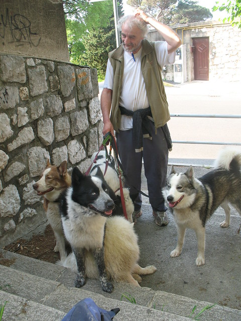 Homeless man and the dogs that he saved