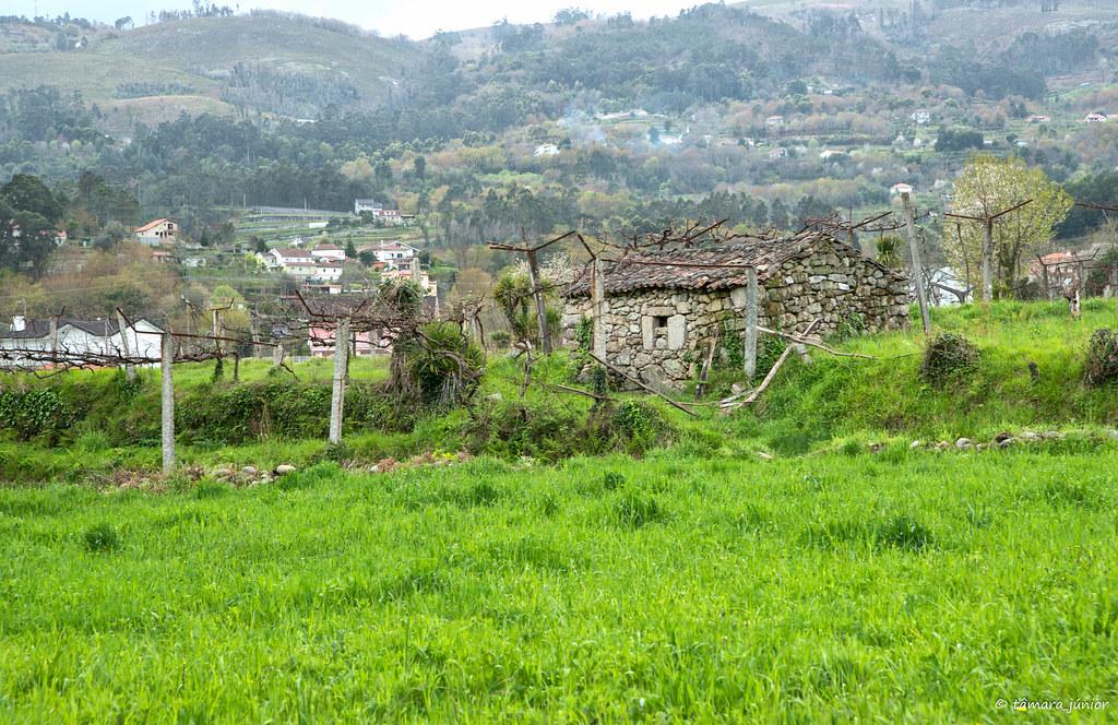 2018.- Ecovia do Vez (Sistelo-Arcos) (455)