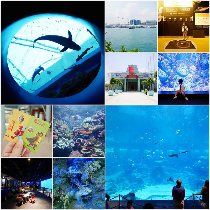 collage新加坡
