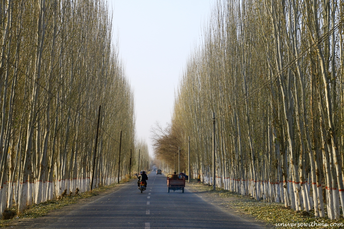 China Xinjiang Travel_041