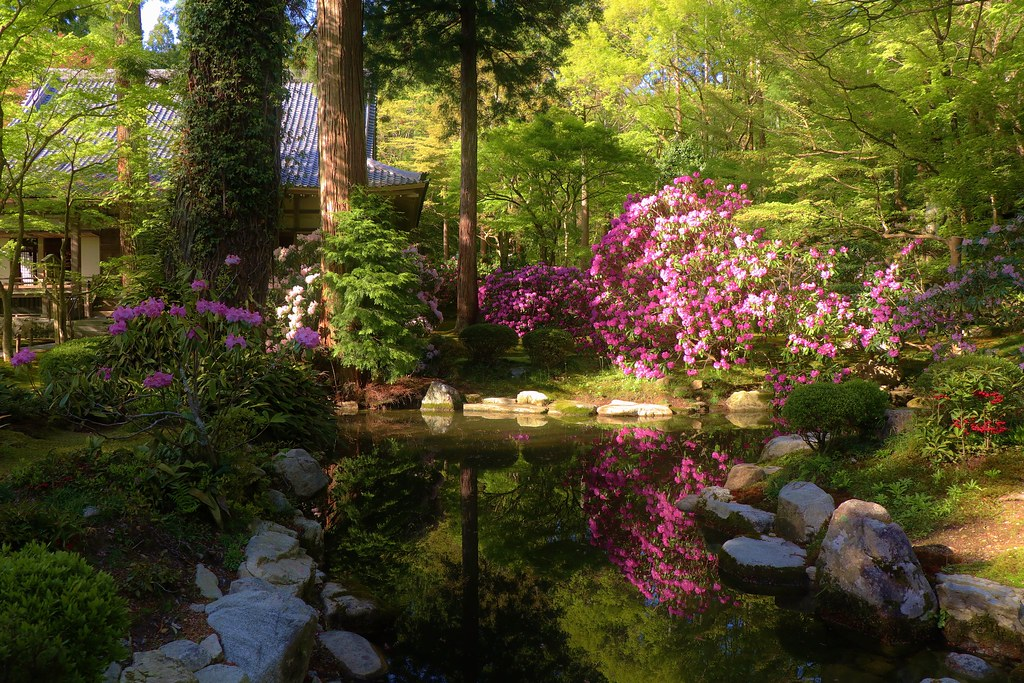 Reflective / Kyoto Sanzen-in Yusei-en garden 京都 三千院