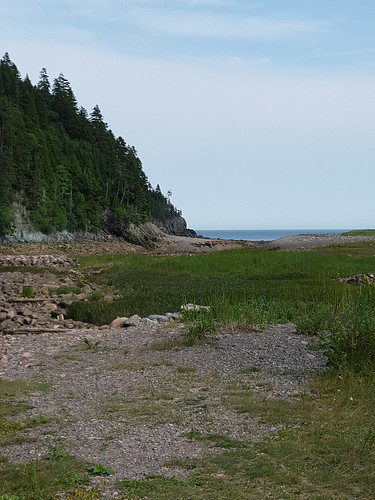 Fundy National Park. From Eight Surprising Delights Around Canada's Bay of Fundy
