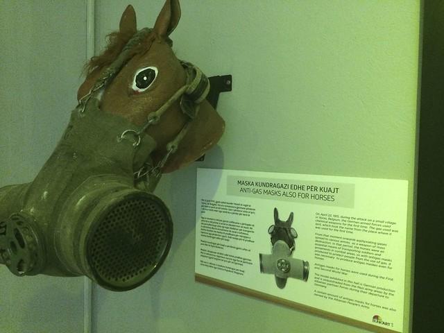 Bunk Art Horse Mask