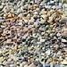 Kaleidoscope beach rocks
