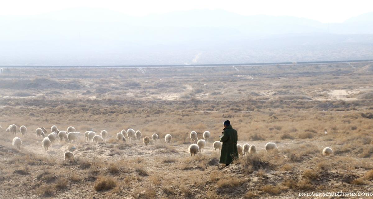 China Travel Desert_045