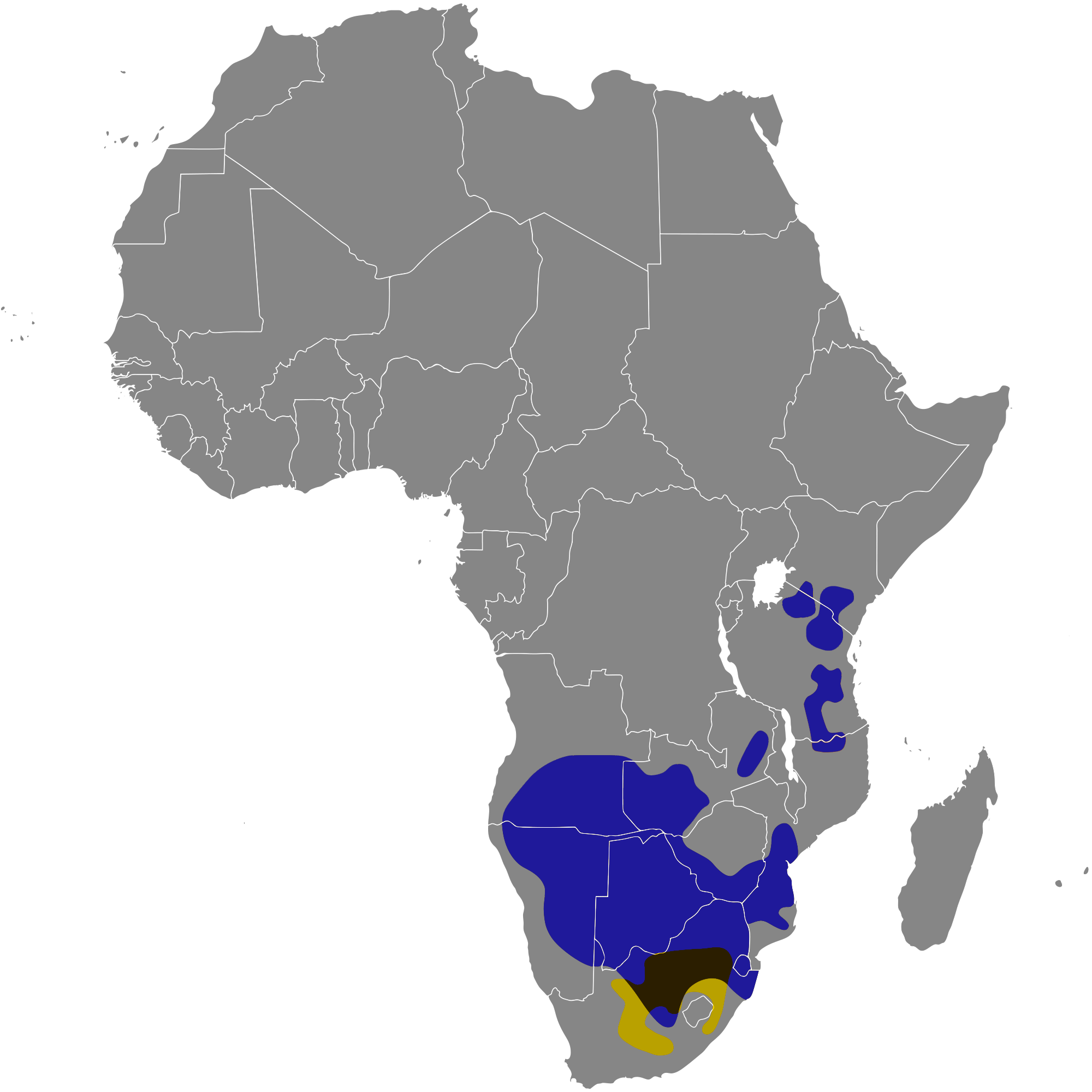 Approximate distribution of Wildebeest. Black wildebeest shown yellow. Blue wildebeest shown blue. Overlapping range shown brown.