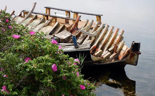 A boat skeleton in Copenhagen's Christiania District