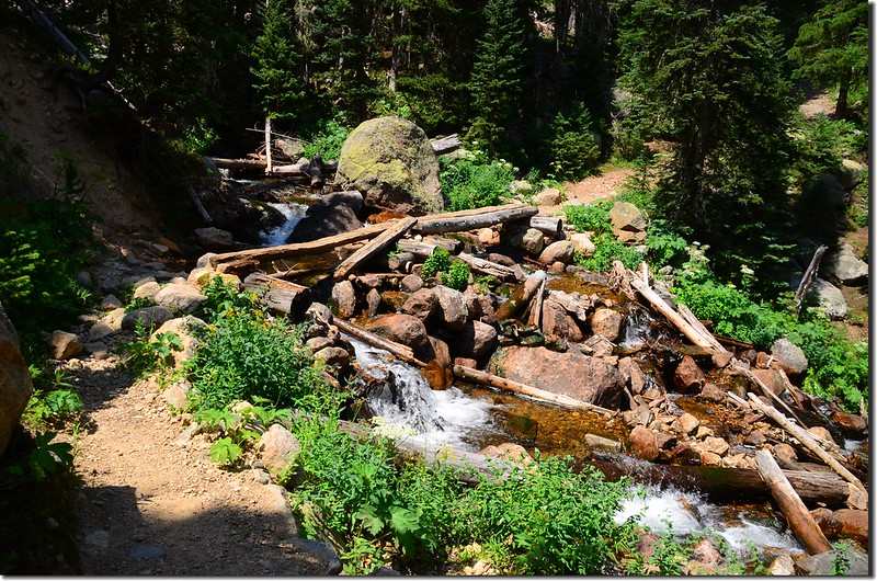 Crossing log bridge at Arapaho Creek