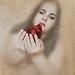 Bloody by Joana Cardoso | Photography