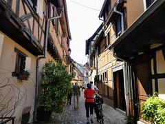 P1030810 - Photo of Biltzheim
