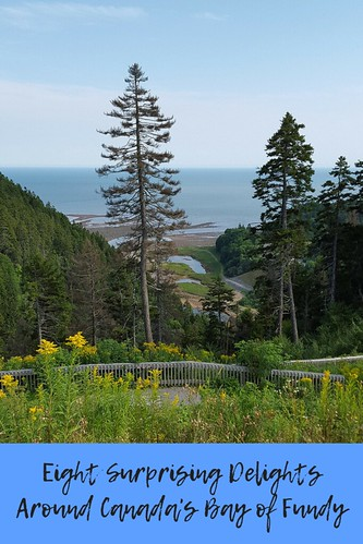 Eight Surprising Delights Around Canada's Bay of Fundy