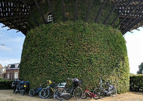 Bikes at the Windmill