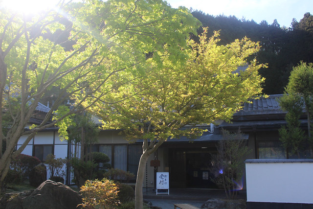 houtokuji-gosyuin04064