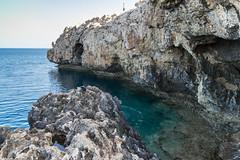 Cap Greco swimming